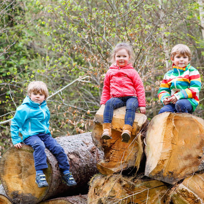 Little girl and two boys playing together in forest stock image