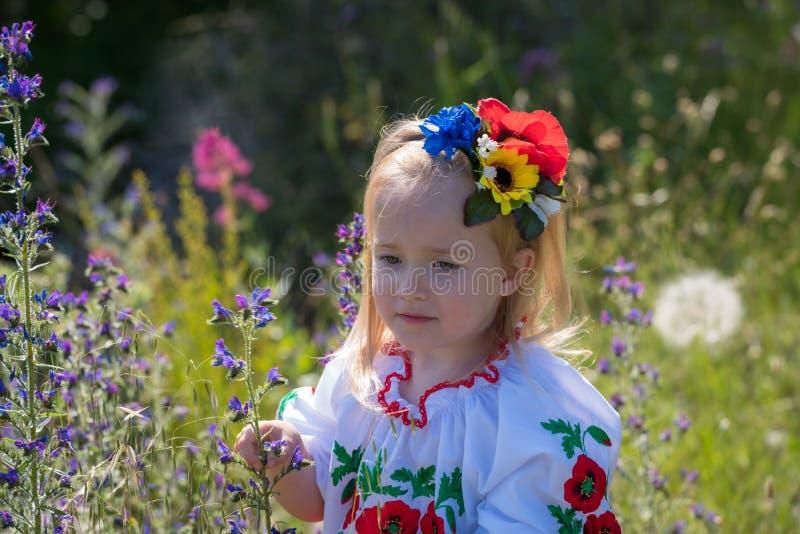 Little girl in Ukrainian national dress royalty free stock photo