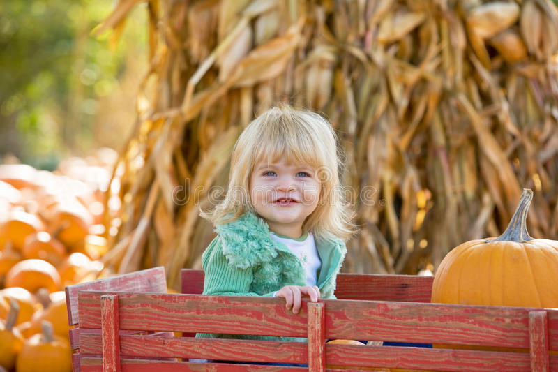 Download Little Girl in a Wagon stock photo. Image of play, gourds - 10518650