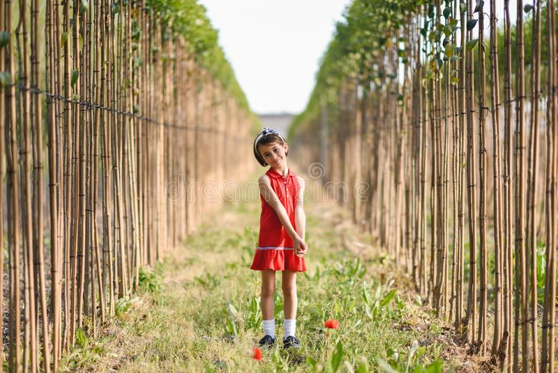 Little girl walking in nature field wearing beautiful dress royalty free stock photography