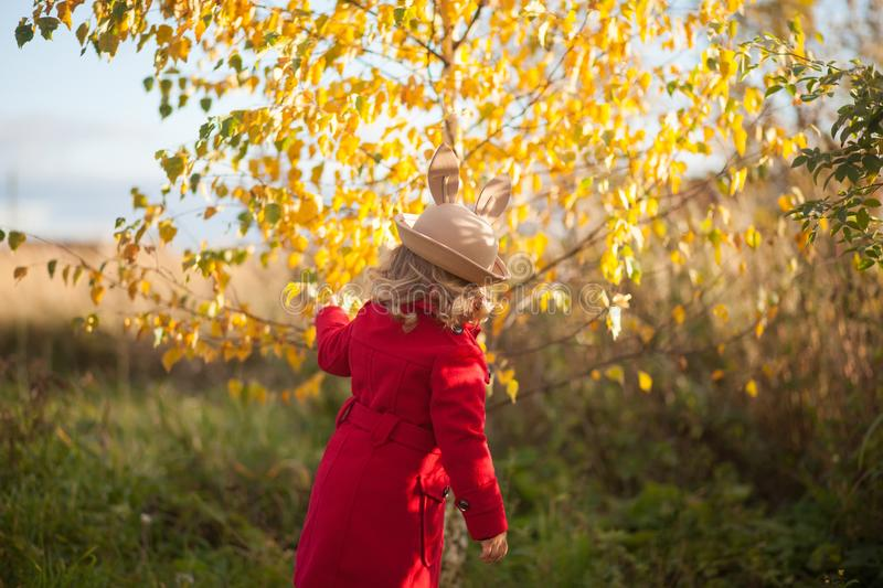 Little girl walking in the park, autumn day. stock images