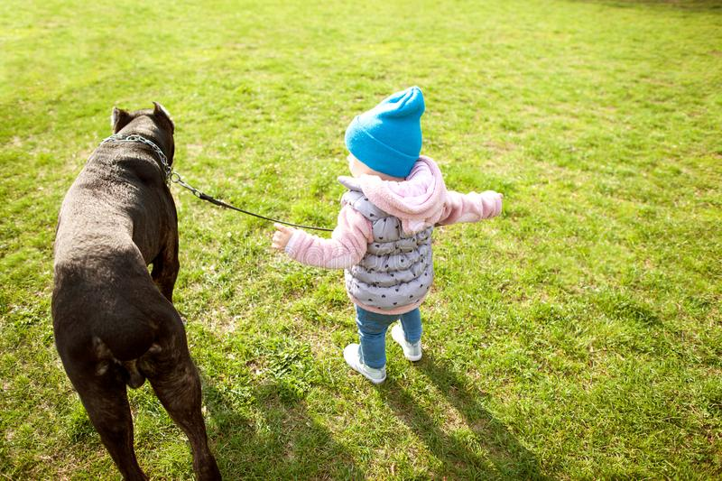 Little girl is walking in the park with her big dog stock photography