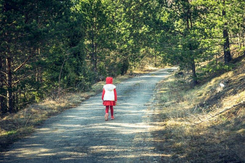 Little girl walking in the woods. Little girl in red walking in the woods stock image