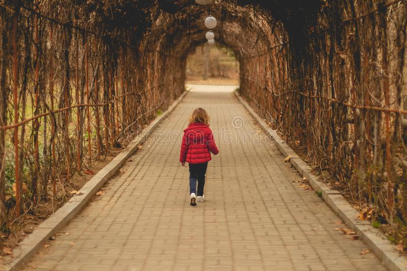 A little girl walks alone through the tunnel of autumn plants, holds in her hand an autumn leaf stock photography