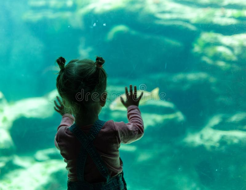 Little girl watching fishes in a large aquarium in the Oceanopolis, Brest, France 31 May 2108 stock images