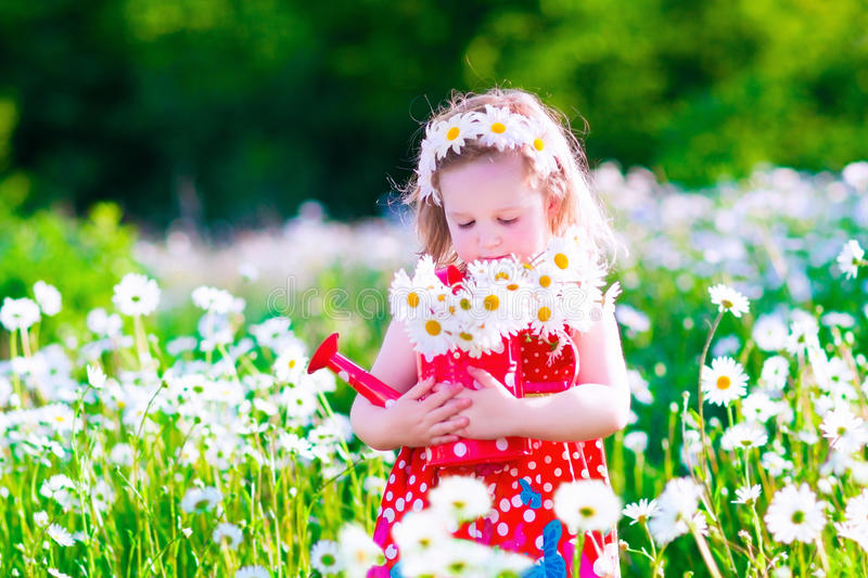 Little girl with water can in a daisy flower field. royalty free stock images