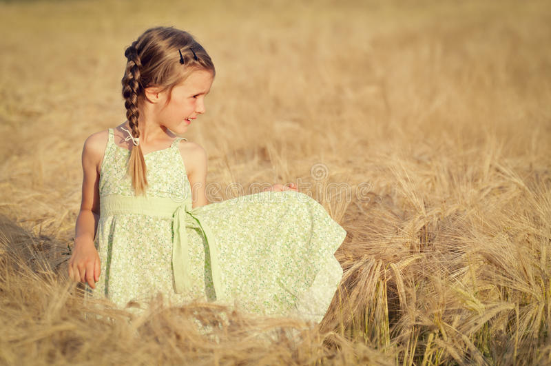 Little girl in wheat field stock images