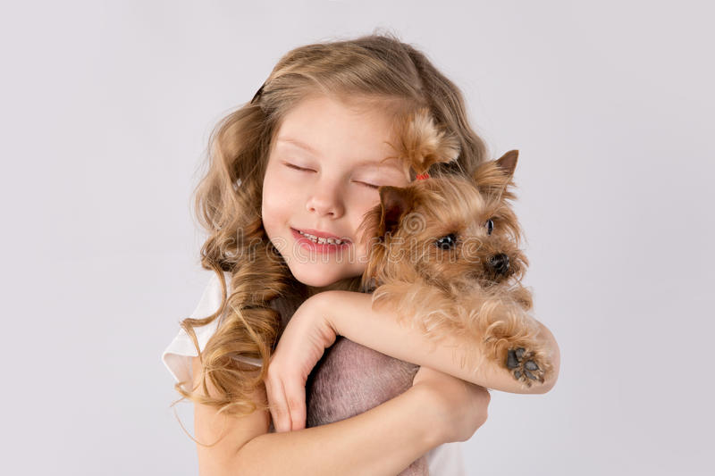 Little girl with white Yorkshire Terrier dog on white background. Kids Pet Friendship. Cute child, little girl blonde with beautiful hair holding Yorkshire stock images