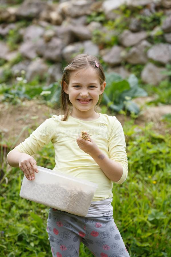 Little girl working in the garden royalty free stock image