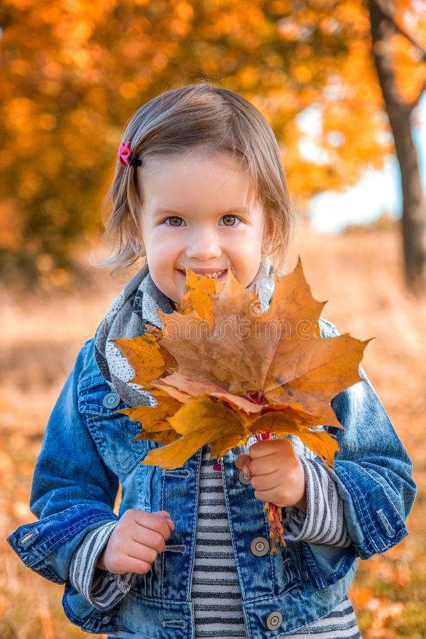 Little girl with yellow autumn golden leaves. Child play outdoors in the park. Portrait. Happy. stock photo
