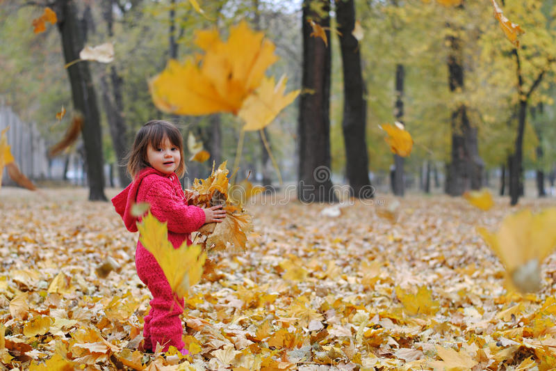 A little girl in yellow leaves royalty free stock photo