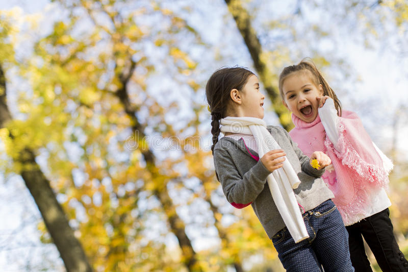Little girls in the autumn park stock image