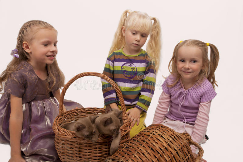 Download Little Girls With Burmese Cats Stock Image - Image of expression, facial: 18158275