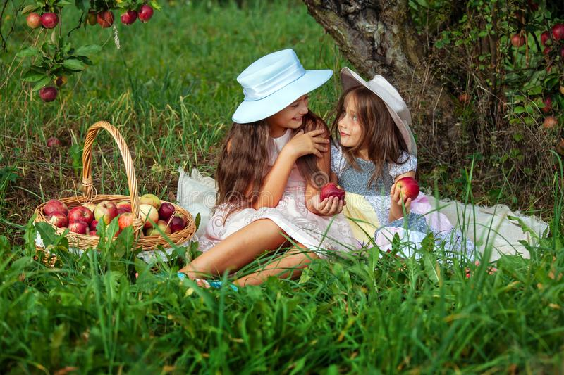 Girl two sisters harvest garden trees red pink hat basket picking apples green grass background stock photos