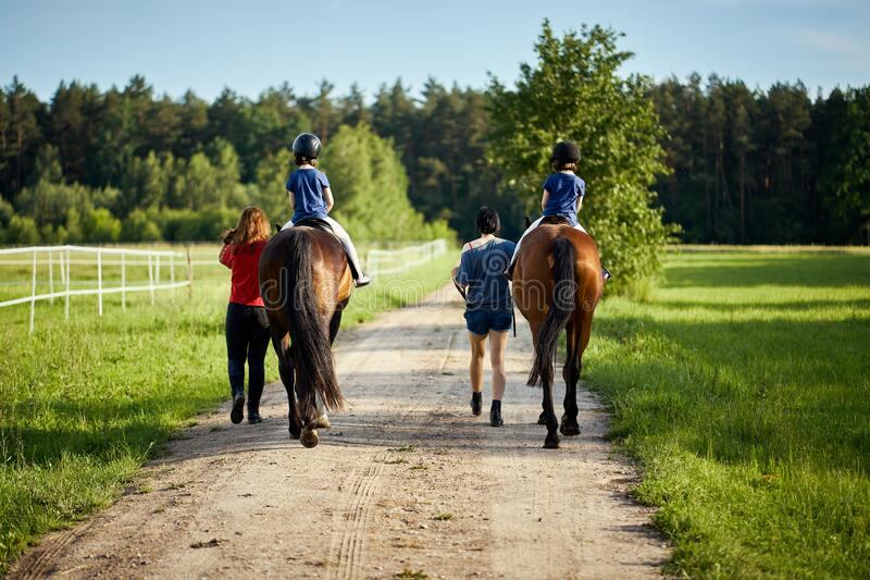 Little girls ride beautiful horses on the road in the forest in summer stock image