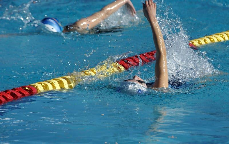 Little Girls Swimming Backstroke stock images