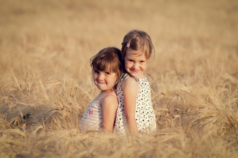 Little Girls In Wheat Field Royalty Free Stock Image