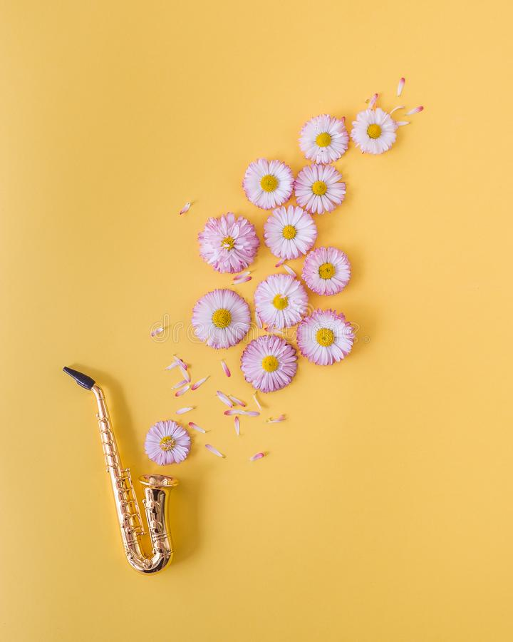 Little golden saxophone and pink daisies on orange background. Postcard concept. royalty free stock image