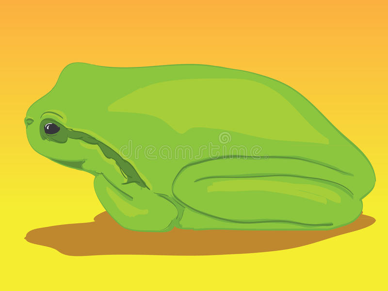 Download Little green tree-frog stock illustration. Image of isolated - 20734919