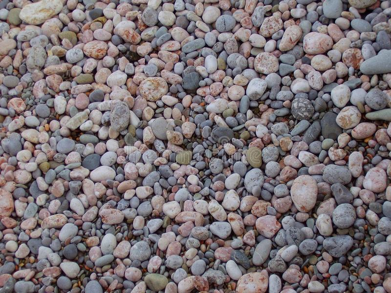 Little sea pebbles. Sea shingles. royalty free stock images