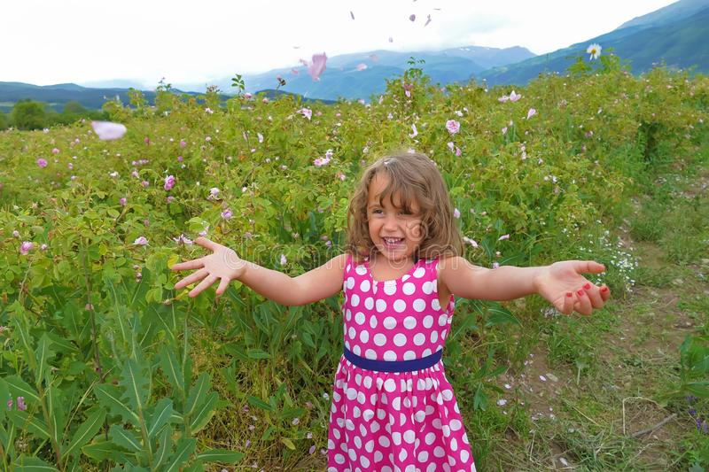 Little happy girl in valley of roses throw petals royalty free stock image