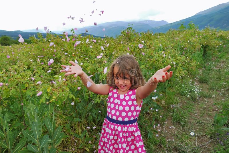 Little happy girl in valley of roses throw petals stock photos