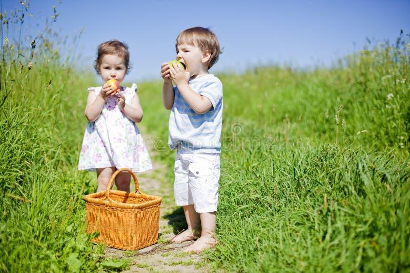 little har picknick royaltyfria bilder