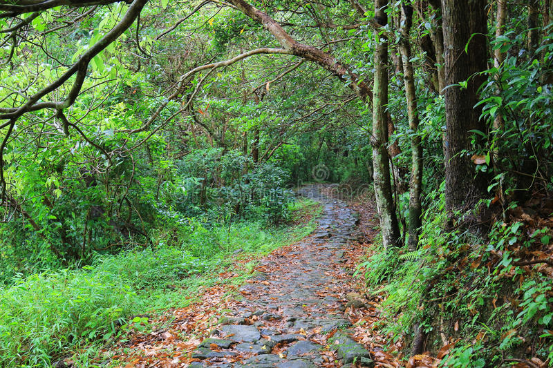 The little Hawaii trail at tko sai kung. 2017 stock photos