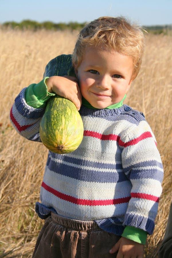 Little helper. Smiling little boy holding squash on the shoulder stock image