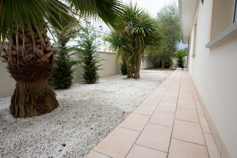 Little home garden with palm tree front house stock photography