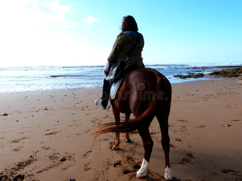 A little horse riding royalty free stock photo