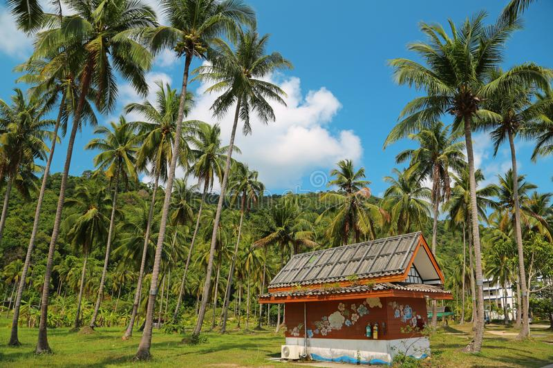 Little house amongst palms on Koh-Chang island, Thailand royalty free stock photo