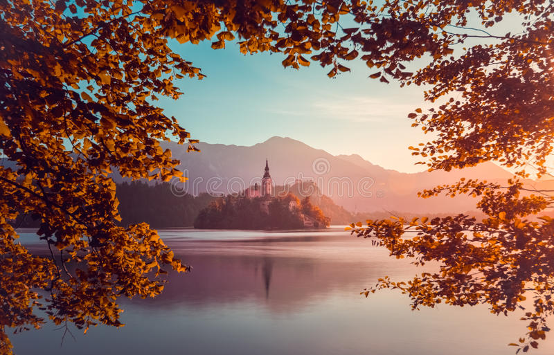 Little Island with Catholic Church in Bled Lake, Slovenia at Sunrise stock images