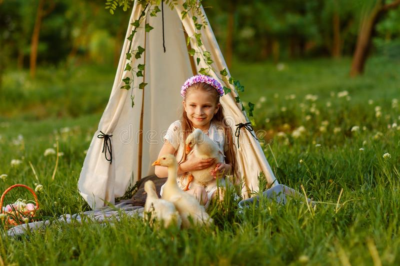 Little shepherdess girl geese, girl holding goose royalty free stock image