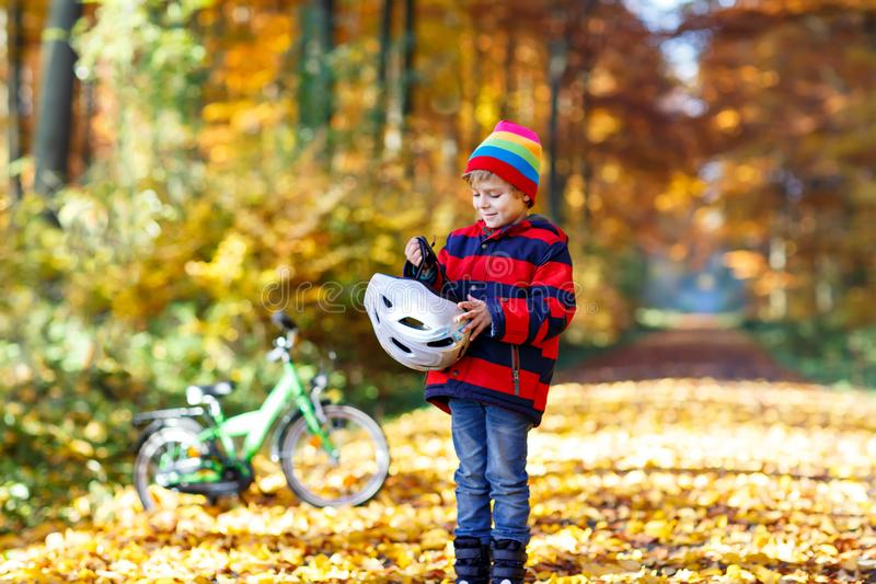 Little kid boy in colorful warm clothes in autumn forest park with a bicycle. Active child putting safe helmet before. Cycling on sunny fall day in nature royalty free stock photography