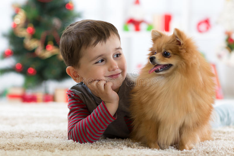 Little kid boy with dog lying on the floor in festival room stock photo