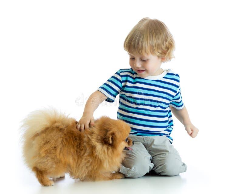 Little boy with dog spitz, isolated on white background. Little kid boy with dog spitz, isolated on white background royalty free stock photo
