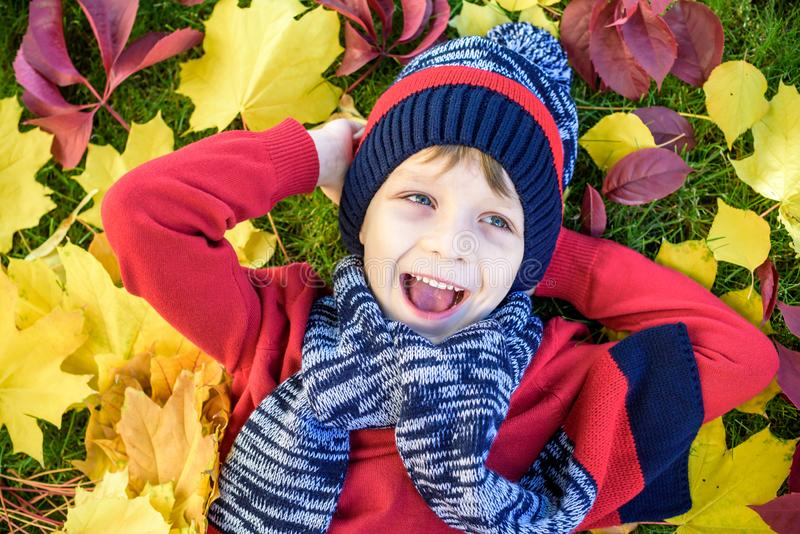 Little kid boy lying in autumn leaves in red pullover. Happy child having fun in autumn park on warm day. Cute school boy smiling stock photography