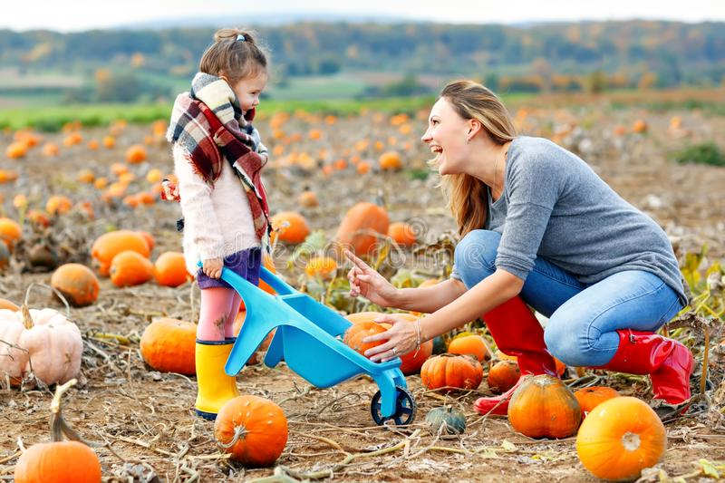Little kid girl and beautiful mother having fun with farming on a pumpkin patch. Traditional family festival with stock photo