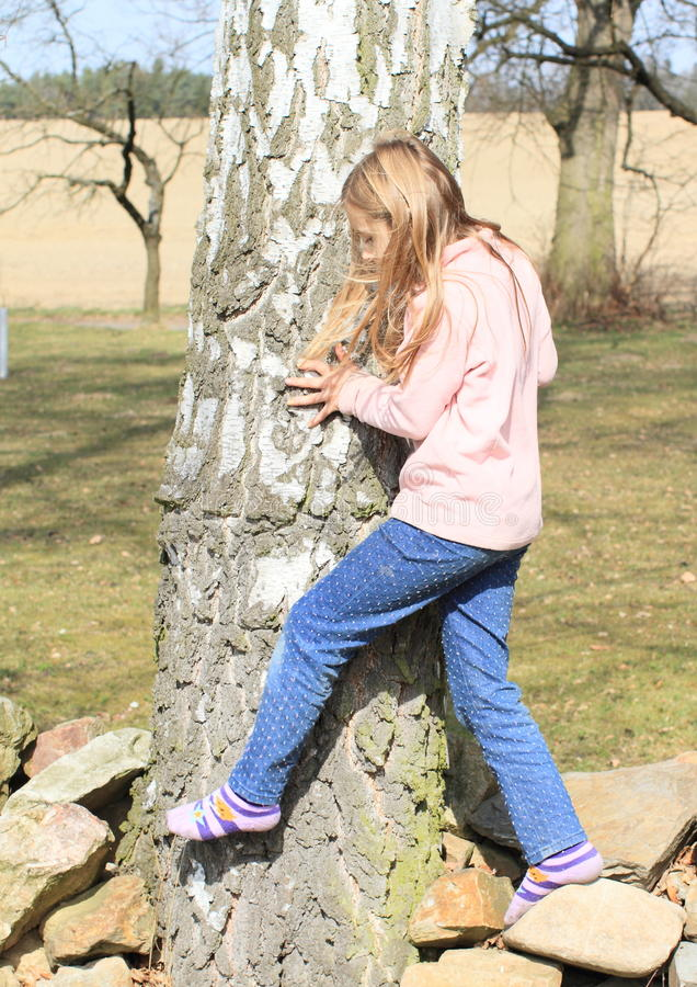 Free Little Kid - Girl Surrounding A Trunk Royalty Free Stock Photo - 39043445