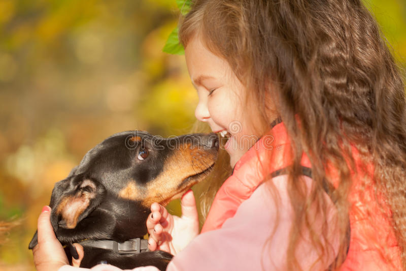 Little kid kissing dachshund puppy. Love to animals concept stock photos