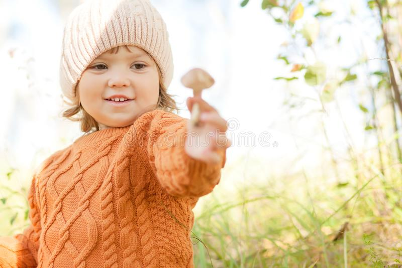 Little kid picking edible musroom, autumn forest. Child at the forest, discovering nature, touching mushroom. Kid at the forest concept, little mushroomer, fall stock photo