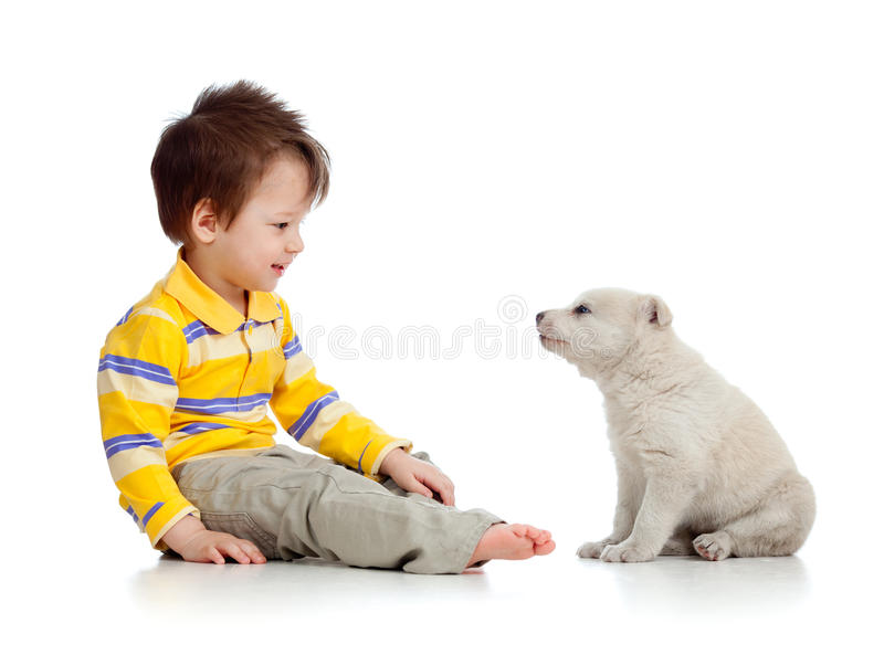 Little kid and puppy looking at each other on whit. E background royalty free stock image