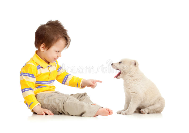 Little kid training puppy on white background. Little child training puppy on white background royalty free stock images