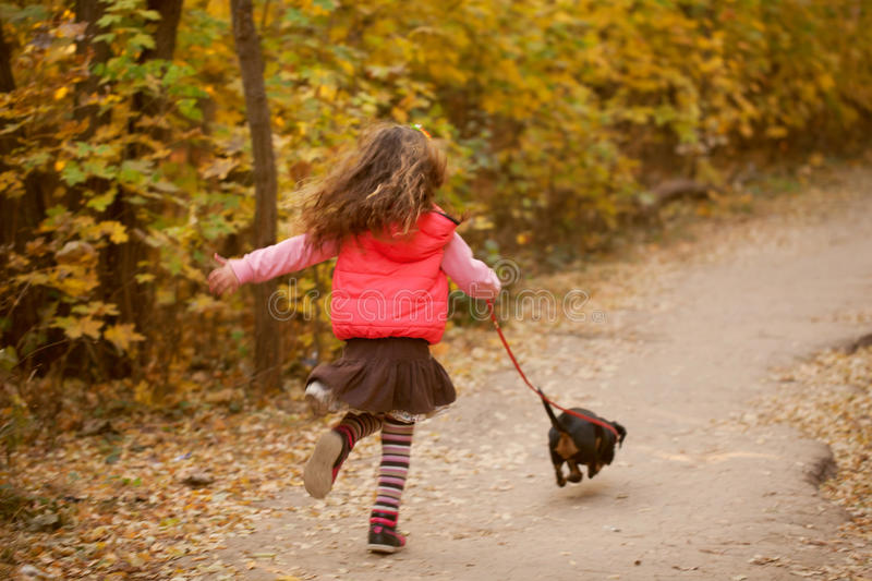 Little kid walking with puppy. stock images
