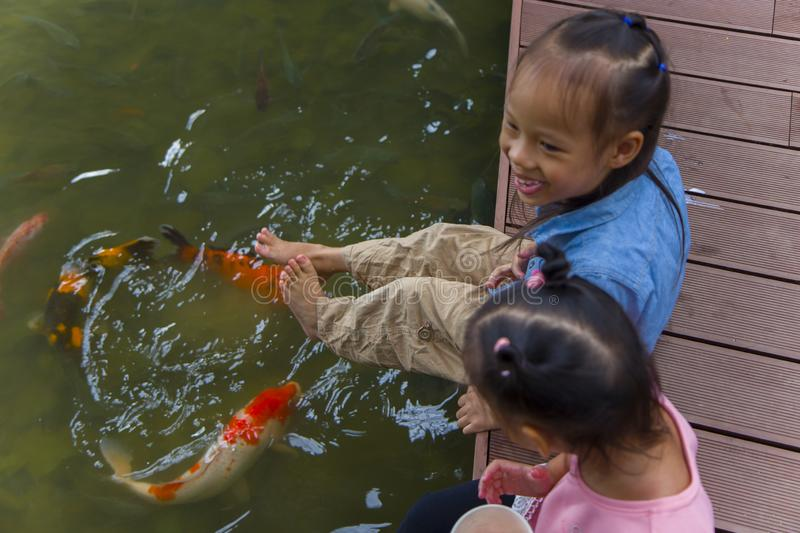 Little kids look at the water and feeding fishs on the wooden bridge. High resolution image gallery royalty free stock images