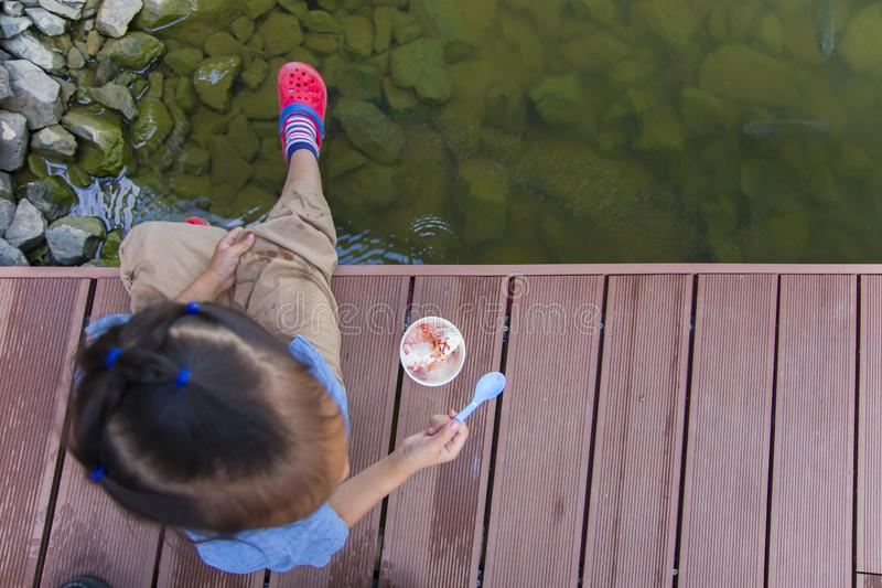 Little kids look at the water and feeding fishs on the wooden bridge. High resolution image gallery stock image