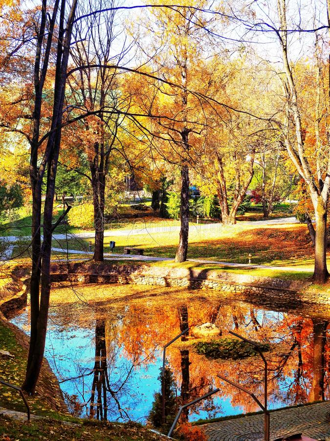 Little lake and colorful mirroring stock images