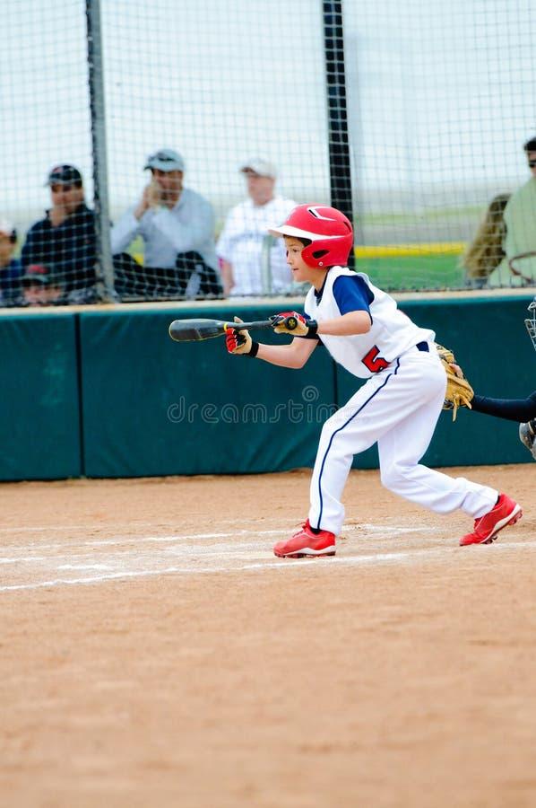 Little league baseball batter. Little league baseball boy about to bunt the ball stock photos