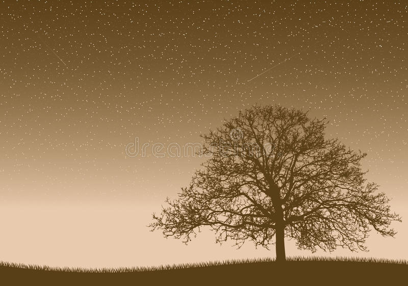 Little Life. Big old tree under the infinity universe stock illustration